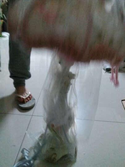 仲马 欧式台灯 LED卧室书房床头  照明灯具婚庆装饰韩式公主田园创意台灯 珍珠黑款(送相框+LED灯泡) 调光开关 晒单图
