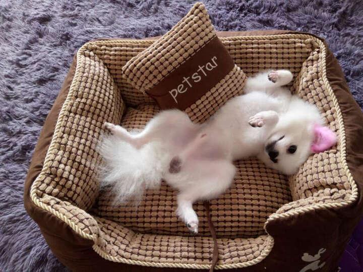 华元宠具(hoopet) 狗窝泰迪可拆洗窝四季可用金毛柔软舒适宠物猫窝萨摩耶小型犬狗床S 晒单图