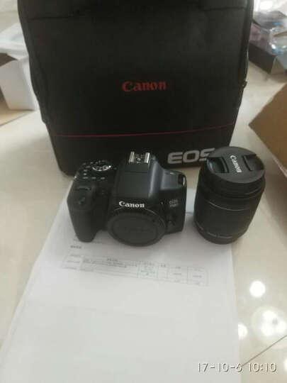 佳能(Canon)EOS 750D 单反相机 入门级 佳能机 照相机 腾龙18-200mm Di II VC防抖镜头 晒单图