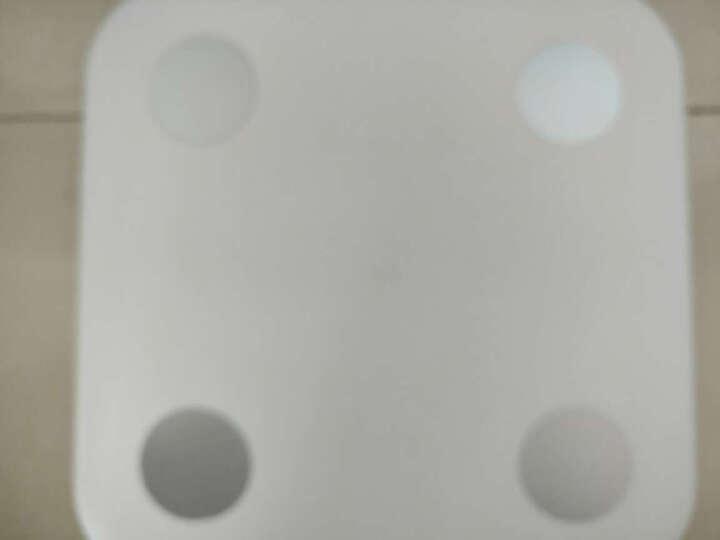 小米(MI)体脂秤白色 体重秤 智能体脂秤 电子秤 人体秤 家用体重秤 精准 APP数据测量 晒单图