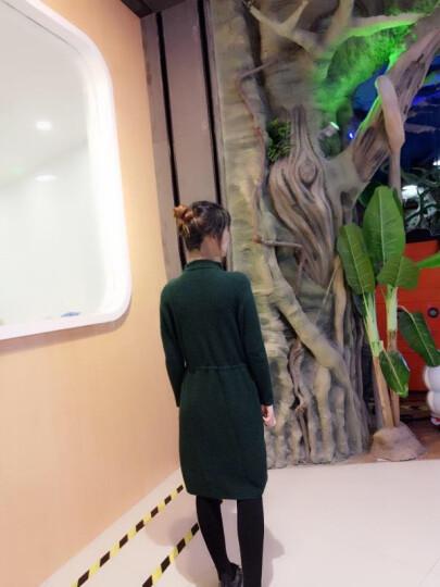 海浪之乐针织连衣裙长袖高领毛衣裙女中长款2019秋冬新款韩版修身大码打底衫遮肉大码胖mm裙子 绿色 L 晒单图