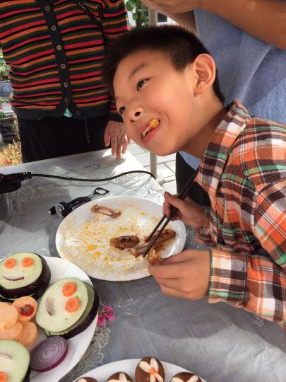 正大食品CP 速冻鸡肉丸 500g/袋 火锅食材涮锅食材 葱香味 晒单图