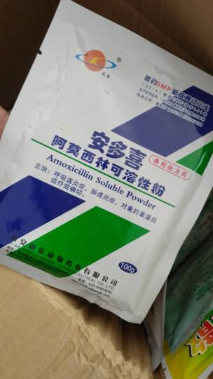 天濟 10%兽用阿莫西林可溶性粉家禽牛羊兽药猪用鸡用抗生素100g 晒单图