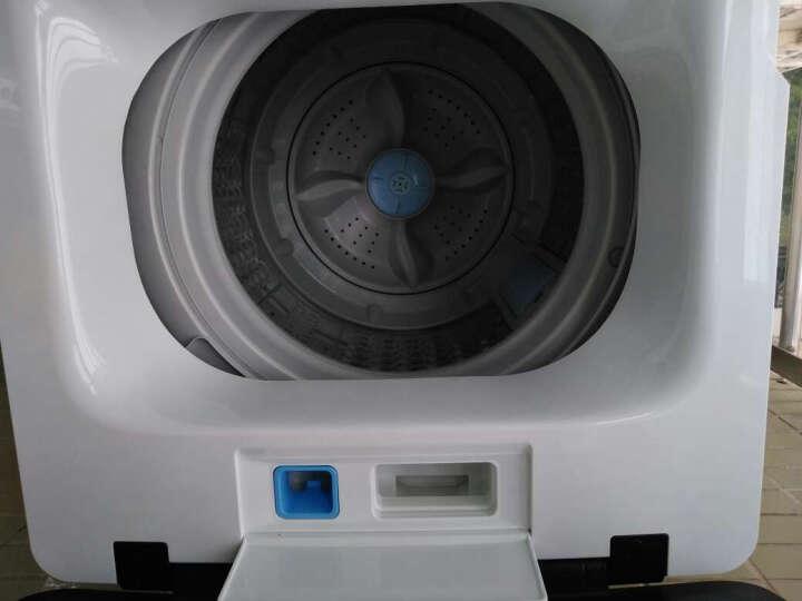 TCL 7公斤 全自动波轮洗衣机 洁净泡雾洗(芭蕾白) XQB70-F103T 晒单图