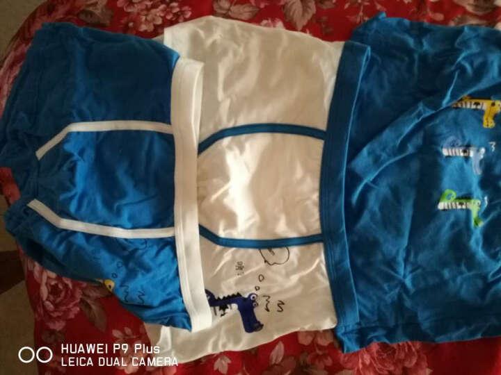红豆(Hodo)儿童内裤男中大童A类标准三条盒装小孩卡通印花四角裤HDK781 150 晒单图