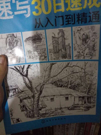 素描基础 画风景:铅笔素描从入门到精通 速写静物 风景素描画手绘技法新手学画画基础 晒单图