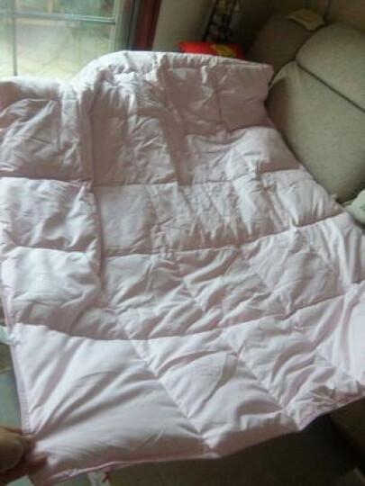 羽毛绒被加厚单双人冬被白鹅毛春秋被全棉被芯子被子冬 粉红色 200*230cm7斤 晒单图