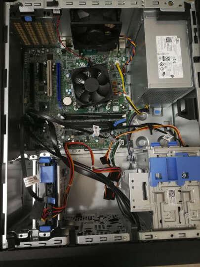 戴尔(DELL)T30小型塔式服务器主机 台式电脑整机箱 支持WIN7 至强四核E3-1225V5 3.3GHz 16G内存/2*2T硬盘 晒单图