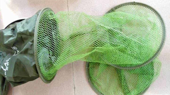 比尔傲威(billalways)涂胶防挂鱼护 鱼网兜鱼篓装鱼网袋渔具 竞技精品 40cm*2米果绿色 晒单图