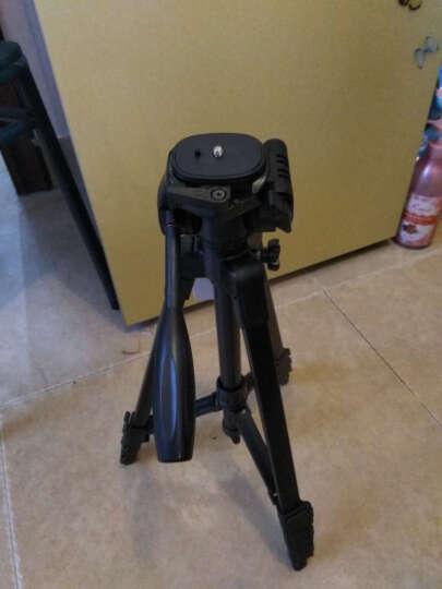 缔杰(DIGIPOD)TR562F 便携三脚架 手机单反相机专业三角架 摄影支架摄像云台套装( 典雅钛) 晒单图