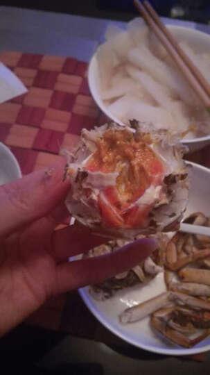 【礼券】 合锦上大闸蟹礼券礼卡1588型螃蟹礼盒 8只 公4.5两 母3.0两 晒单图