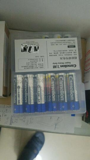 飞狮(Camelion)碳性电池 干电池 6F22/9V/9伏 电池 12节 遥控玩具/烟雾报警器/无线麦克风 晒单图