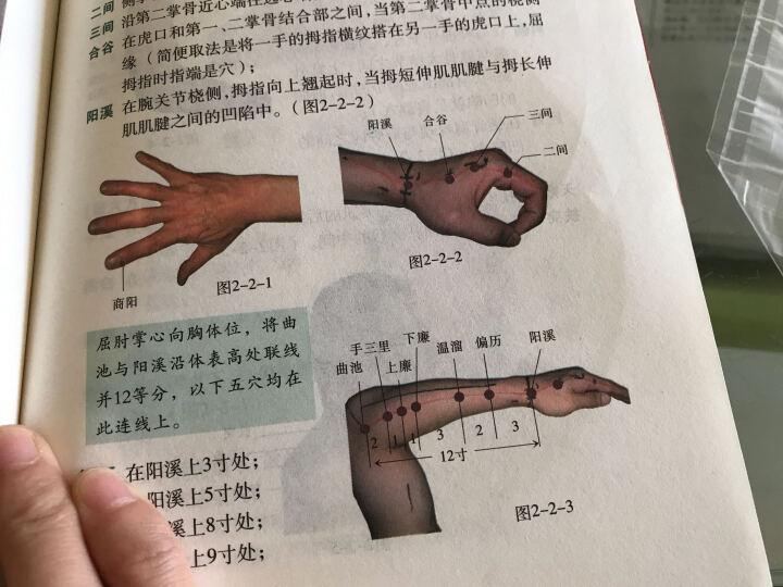 针灸取穴纲要(附盘) 晒单图