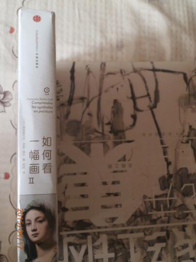 如何看一幅画2  艺术入门图书 弗朗索瓦芭布高尔著 法国艺术史家 看懂艺术不再视而不见 晒单图