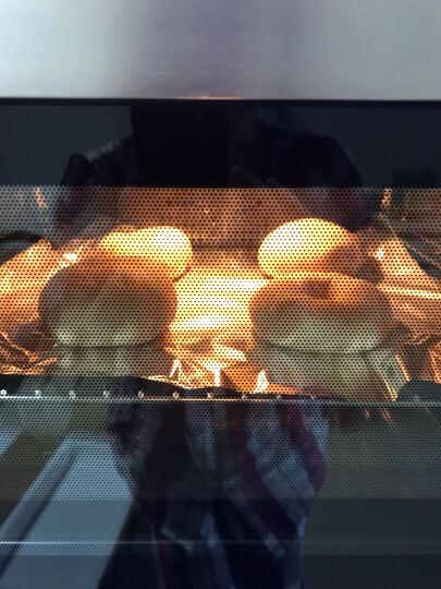GOVOS 德国 R58U 蒸烤箱嵌入式电蒸箱烤箱一体机 二合一家用内嵌式镶嵌式蒸汽炉电烤箱 晒单图