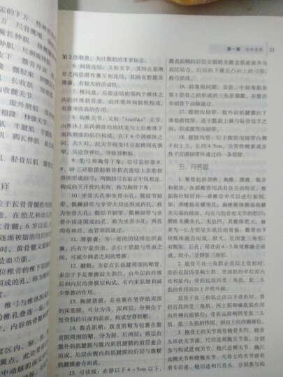 全国高等中医药院校规划教材(第9版):正常人体解剖学习题集(第3版) 晒单图