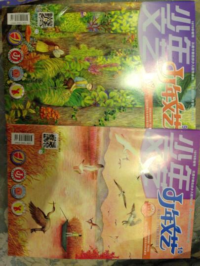 少年文艺杂志预订 2018年11月起订阅 1年共12期  7-12岁儿童文学阅读 杂志铺每月快递 晒单图