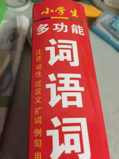 小学生多功能词语词典(最新修订版) 晒单图