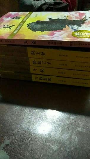 动物小说大王沈石溪·获奖作品:天命 晒单图