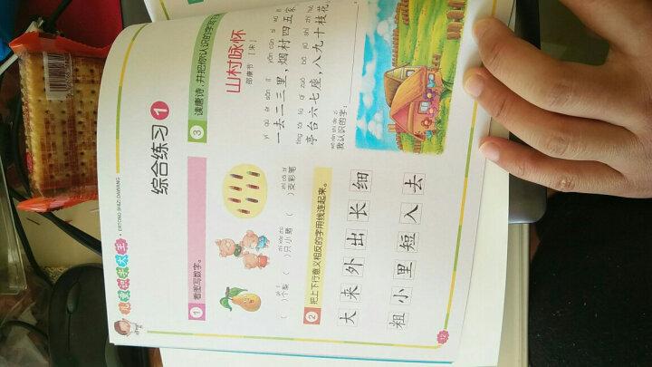 识字大王 幼儿识字书3-4-5-6岁 宝宝学前幼儿园认字教材卡片 精装版 幼儿学前1000字四册 晒单图