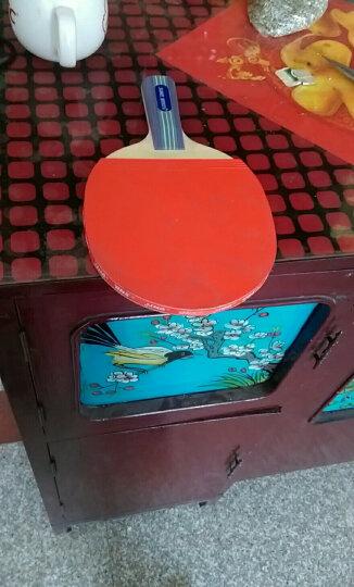官方授权 乒乓球拍红双喜乒乓球成品拍双拍2只初学儿童家庭娱乐型球拍直拍横拍ppq对拍2支 【正反胶-直拍】SH-7对拍 晒单图