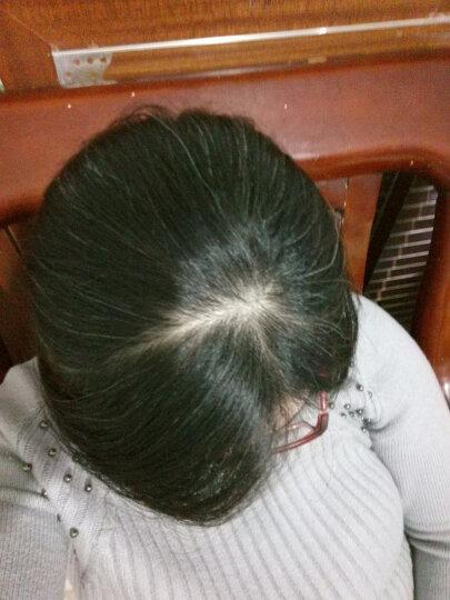 珍草堂 植物染发剂黑色染发膏植物不刺激焗油膏120g 棕黑色 晒单图