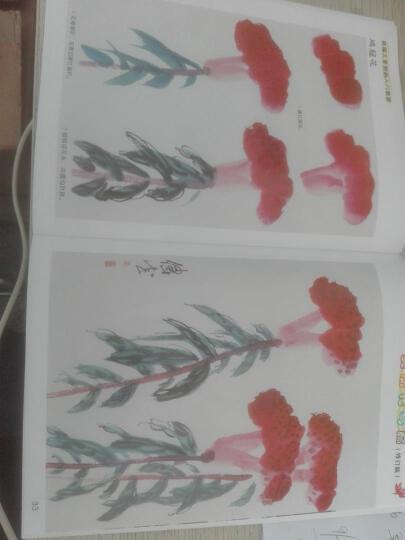 新编儿童国画入门教程:美丽花鸟篇(修订版) 晒单图