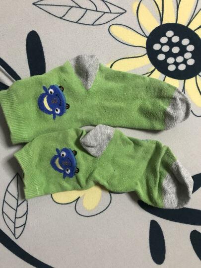 宝娜斯(BONAS)儿童袜子男童女童宝宝棉袜秋冬季保暖袜子5双装 10-12岁 QD15-32 晒单图