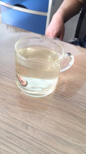 陶瓷故事 飘逸杯耐热玻璃茶具套装泡茶壶功夫茶道水杯玻璃壶沏茶器过滤网玲珑杯 飘逸杯700ML+2小杯 晒单图