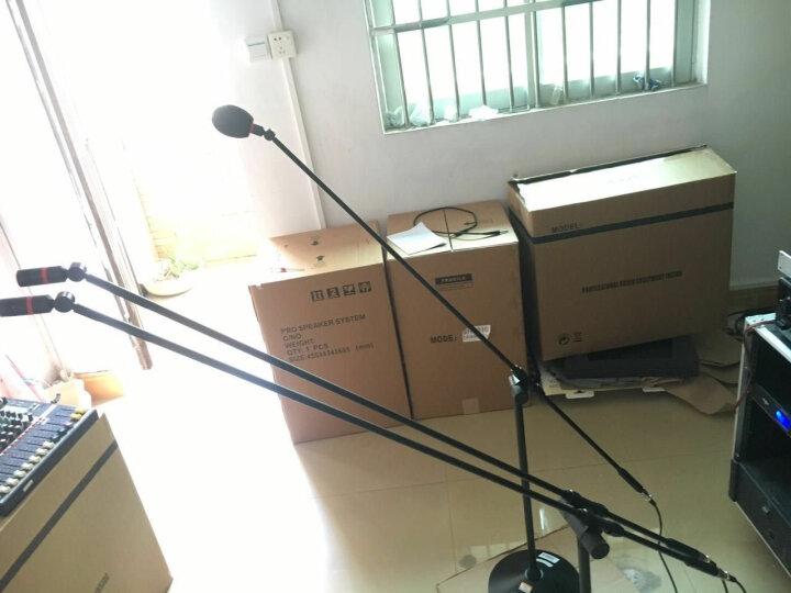 Ridiss 雷迪思 QL712落地立式双杆专业大合唱话筒 会议演讲 演出 电容麦克风 QL712双杆话筒 晒单图