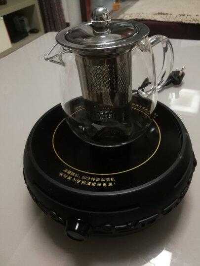 心好(xinhao)电陶炉茶炉家用迷你静音煮茶器大火力套装DTL501 黑色加铁壶 晒单图