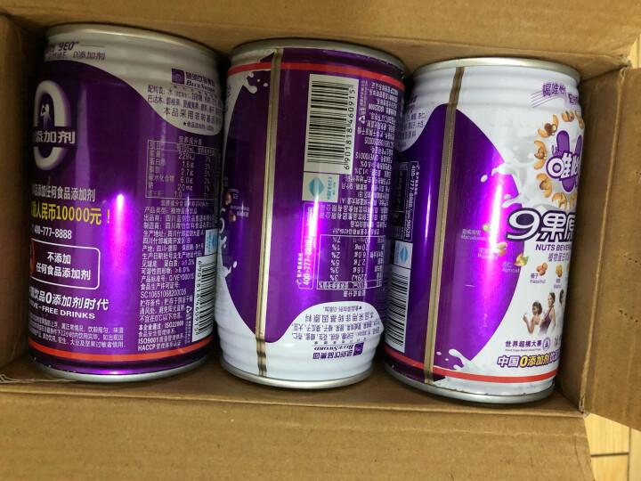 【京东JOY联名款】唯怡(viee)9果原浆豆奶 0添加剂坚果饮料9种坚果制成 310ml x 12听/箱 晒单图