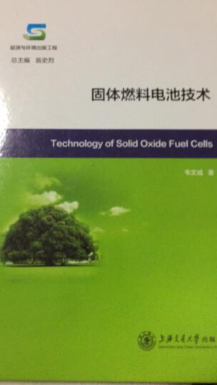 能源与环境出版工程:固体燃料电池技术 晒单图