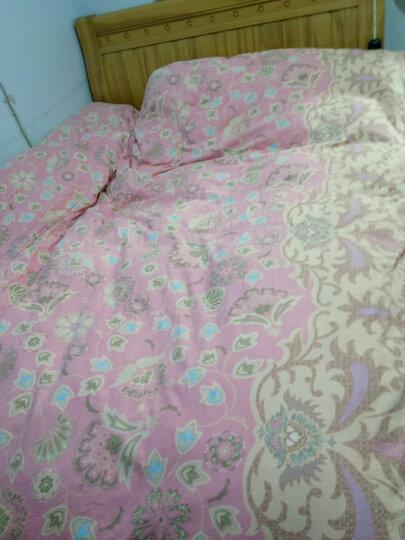 奥力福(oliver)80%白鸭绒被 羽绒被 加厚冬被 被子 被芯 双人被 全棉珠光印花 粉红玫瑰花 220x240cm  1400g 晒单图