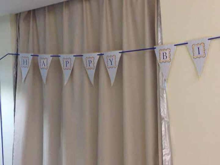 定制 节日派对装扮气氛用品 创意旗帜 拉旗挂旗 儿童生日派对三角旗 蓝色拉旗 晒单图