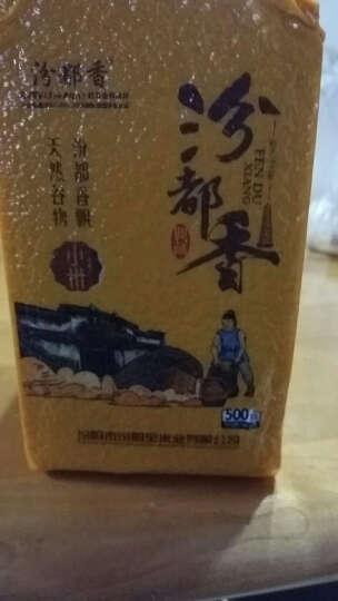 【买三送一】汾都香 山西特产新米 有机黄小米 五谷杂粮小米粥小黄米 真空包装500g 晒单图