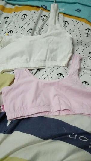 2件装芭比少女内衣 发育期舒适无钢圈学生文胸  纯棉青春期儿童内衣 2件装-(BWX007白色+粉色) 80A 晒单图