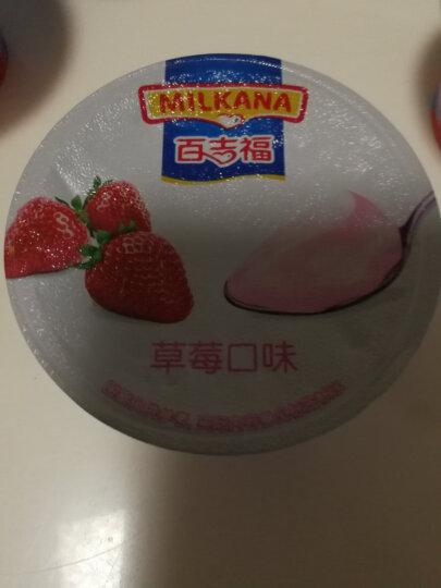 百吉福奶酪布丁奶酪草莓口味80g  晒单图