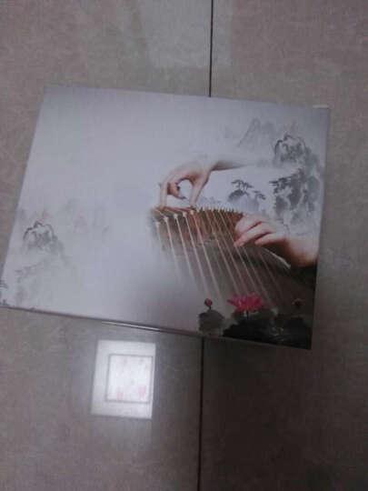打工皇帝 彩色古筝胶布 棉布 琵琶胶带 透气孔型 混色7色各1卷+随机3卷 晒单图