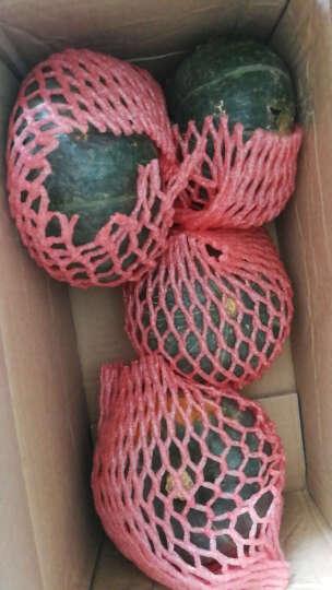【临朐农特产馆】贝贝小南瓜 迷你嫩青南瓜板栗味窝瓜新鲜蔬菜 2.5kg 晒单图