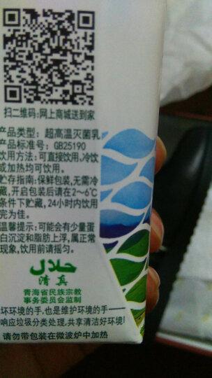 圣湖 青海高原牧场纯牛奶200ml*12盒整箱装 儿童营养早餐牛奶包邮 晒单图