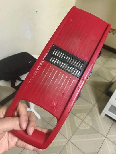 佐优多功能切菜器切丝器切片器蒜泥器 刨丝器切土豆丝擦丝器 厨房用品六件套 送刨刀和包饺子器 红色 晒单图