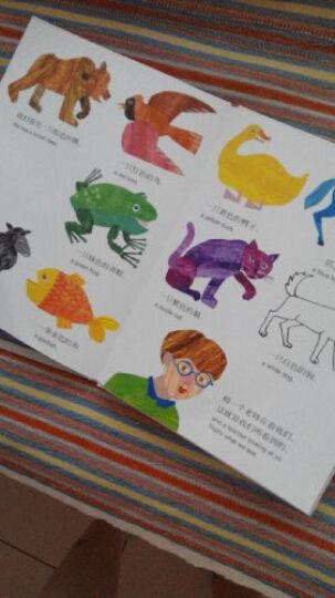 好饿的毛毛虫&爸爸我要月亮&海马先生&棕色的熊棕色的熊 艾瑞卡尔(套装共4册) 3-10岁 晒单图