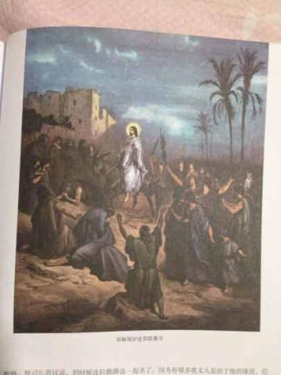 圣经故事(多雷彩色插图版) 晒单图