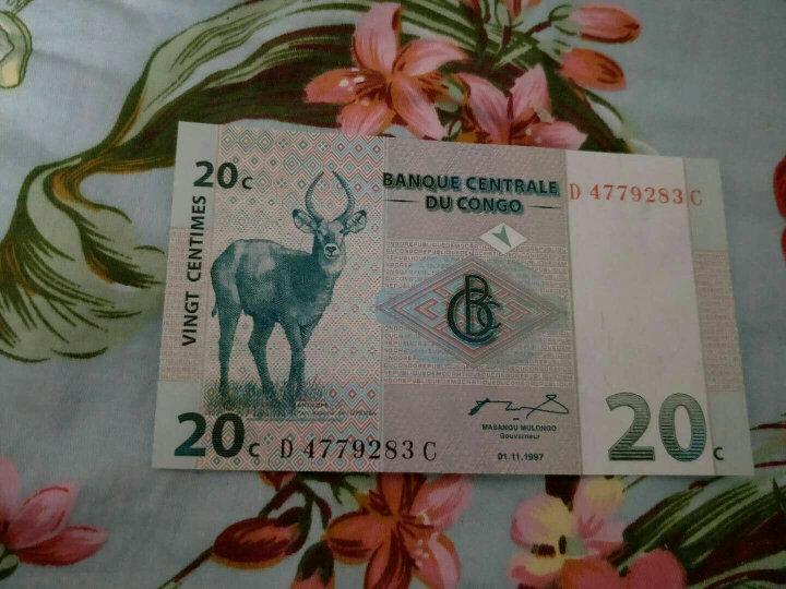流通纪念币保护空盒 生肖纪念币硬币盒 猪鸡年生肖纪念币圆盒 晒单图