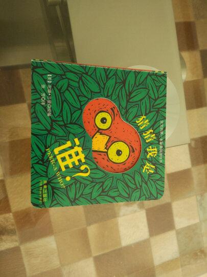 国际绘本大师大卫·香农:大卫,圣诞节到啦!(启发童书馆出品) 晒单图