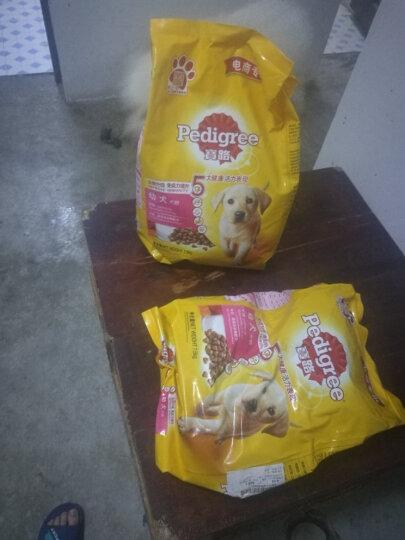宝路 宠物幼犬狗粮 全犬种通用 牛肉味4kg 晒单图