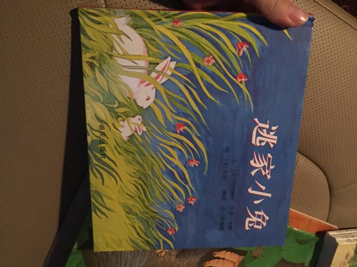狼和七只小羊/小小艺术家·名画名著绘本 晒单图