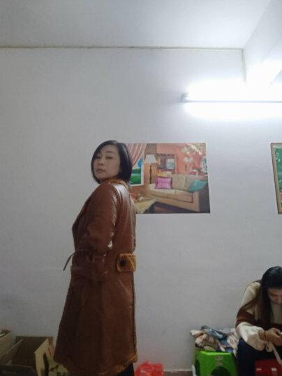 欧资风衣女2018春装中长款系带长袖修身大衣外套女加大码 红条 3XL 晒单图
