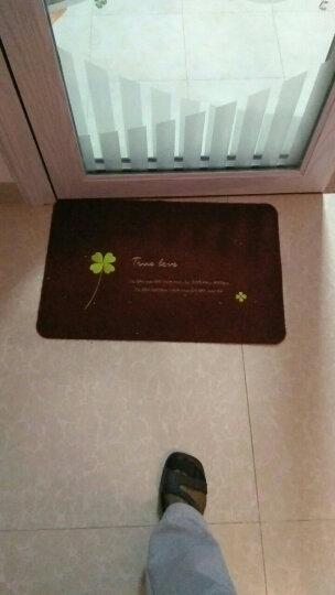马太太进门地垫 定制入户门垫卧室厨房门厅卫生间吸水脚垫厕所浴室家用蹭蹭垫 卡其龙猫 40x60cm(进门垫) 晒单图
